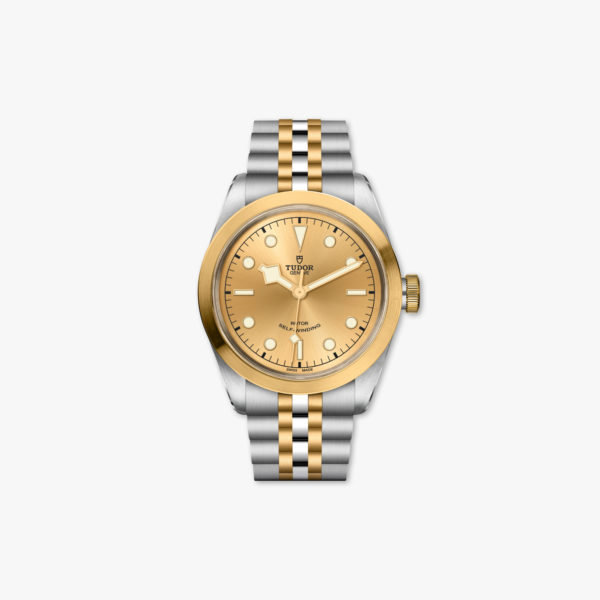 Watch Tudor Black Bay 41 Steel Gold M79543 0002 Champagne Stainless Steel Yellow Gold Maison De Greef 1848